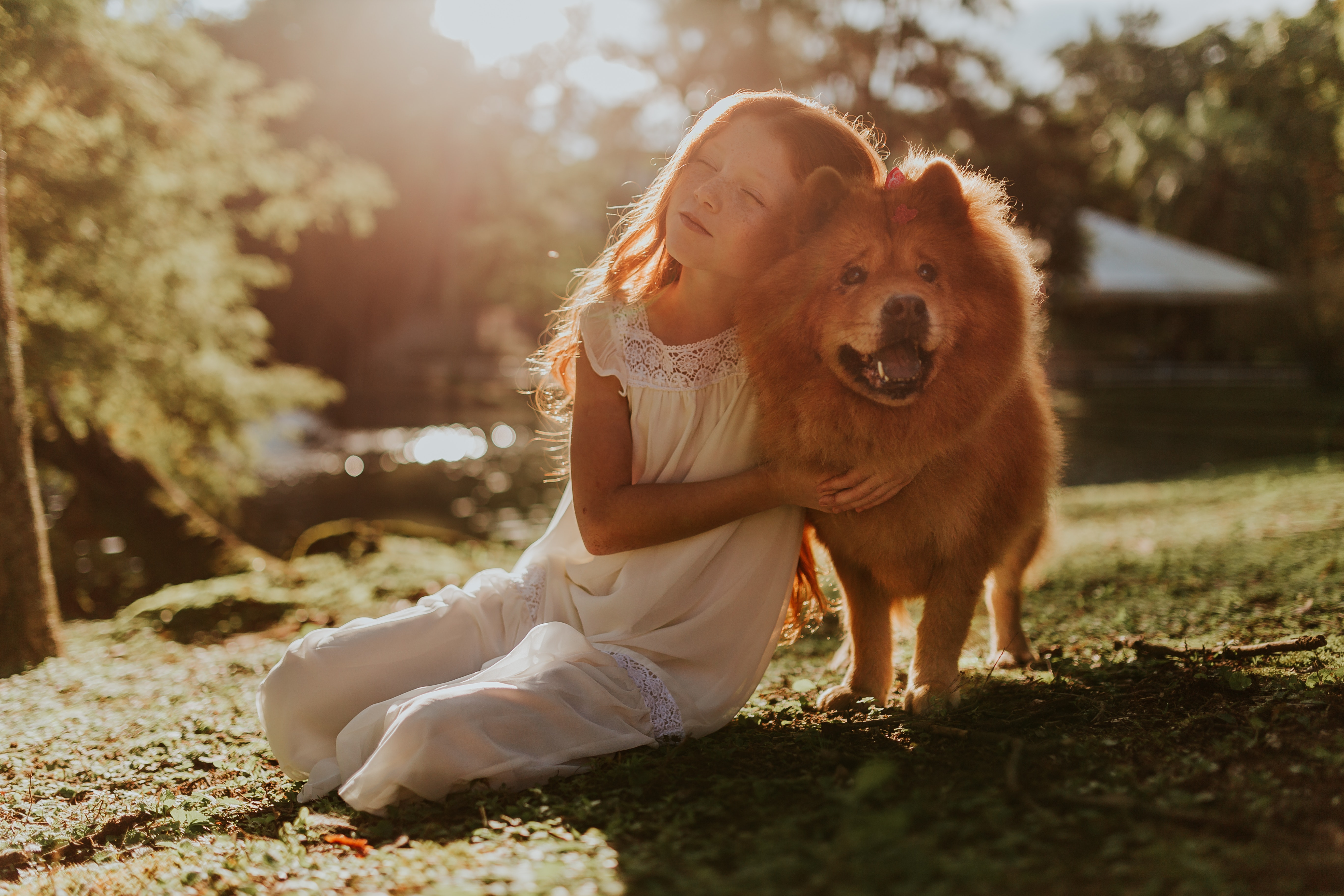 Die besten Hundezuchten für Kinder